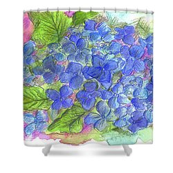 Shower Curtain featuring the painting Blue Hydrangea by Cathie Richardson