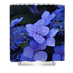 Blue Hydrangea Shower Curtain by Noah Cole