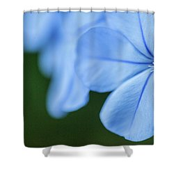Blue In Green 2 Shower Curtain