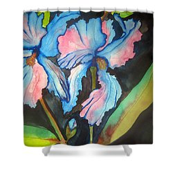 Blue Iris Shower Curtain by Lil Taylor