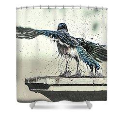 Blue Jay Bath Time Shower Curtain