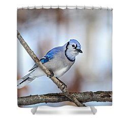 Shower Curtain featuring the photograph Singing My Song by Steven Santamour
