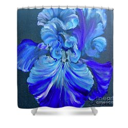 Blue/lavender Iris Shower Curtain
