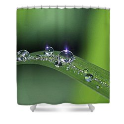 Blue Light On The Droplets Shower Curtain