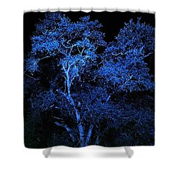 Shower Curtain featuring the digital art Blue Magic by Doug Kreuger