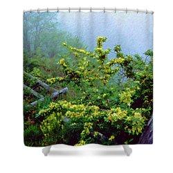 Blue Marsh Dam Fog 003 Shower Curtain