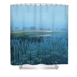 Shower Curtain featuring the photograph Blue Morning Flash by Jorge Maia