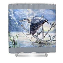 Blue Morning Flight Shower Curtain