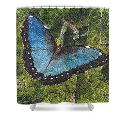 Blue Morpho Butterfly Batik Shower Curtain