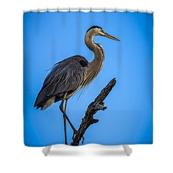 Blue On Blue Shower Curtain by Marvin Spates