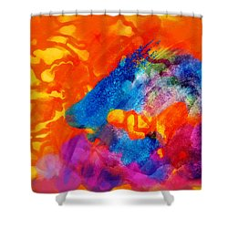 Blue On Orange Shower Curtain