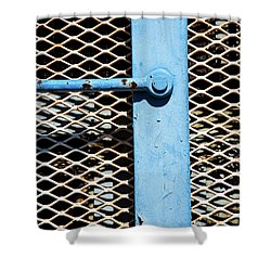Shower Curtain featuring the photograph Blue On White by Karol Livote