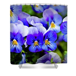 Blue Pansies Shower Curtain by Tamyra Ayles