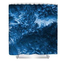 Blue Plants Shower Curtain by Kathleen Struckle