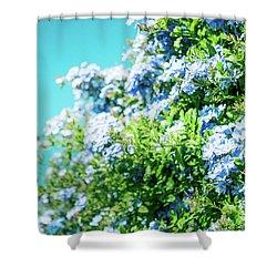 Blue Plumbago Maui Hawaii Shower Curtain by Sharon Mau