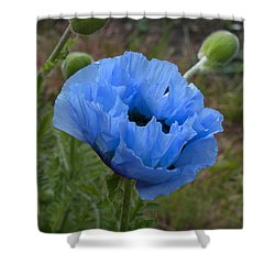 Shower Curtain featuring the digital art Blue Poppy by Paul Gulliver