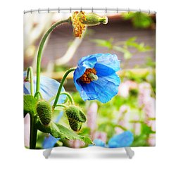 Blue Poppy Shower Curtain