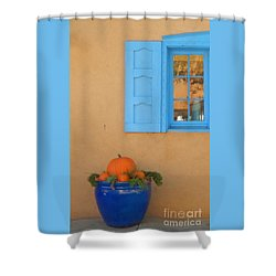 Shower Curtain featuring the digital art Blue Pot And Window by Ann Johndro-Collins