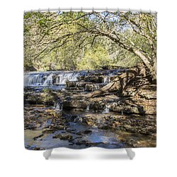 Blue Puddle Falls Shower Curtain by Ricky Dean