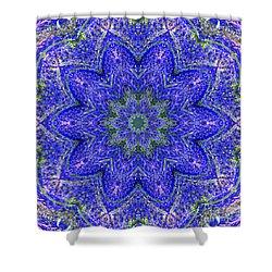 Blue Purple Lavender Floral Kaleidoscope Wall Art Print Shower Curtain by Carol F Austin
