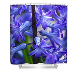 Shower Curtain featuring the photograph Blue Rhapsody by Byron Varvarigos