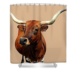 Blue Ribbon Pose Shower Curtain