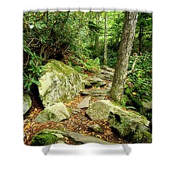 Shower Curtain featuring the photograph Blue Ridge Parkway Hiking Trail by Meta Gatschenberger