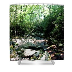 Shower Curtain featuring the photograph Blue Ridge Parkway Stream by Meta Gatschenberger