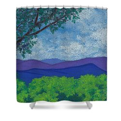 Blue Ridges 4 Shower Curtain