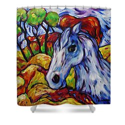 Blue Roan Horse Shower Curtain by Dianne  Connolly