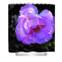 Shower Curtain featuring the photograph Blue Rose by Mark Blauhoefer