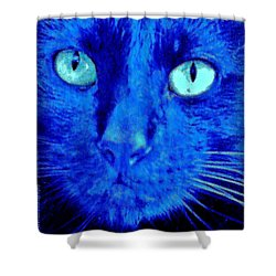 Blue Shadows Shower Curtain