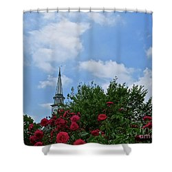 Blue Sky And Roses Shower Curtain