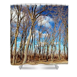 Shower Curtain featuring the photograph Blue Sky And Trees by Valentino Visentini
