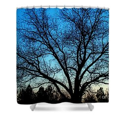 Shower Curtain featuring the photograph Blue Sky At Night by Sue Melvin