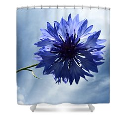 Blue Sky Blue Flower Shower Curtain