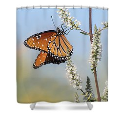 Shower Curtain featuring the photograph Blue Sky Dancer  by Julie Andel