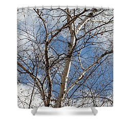Blue Sky In The Middle - Shower Curtain