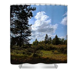 Shower Curtain featuring the photograph Blue Sky by Joanne Coyle