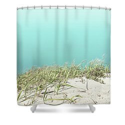 Shower Curtain featuring the photograph Blue Sky Over Sea Grass by Cindy Garber Iverson