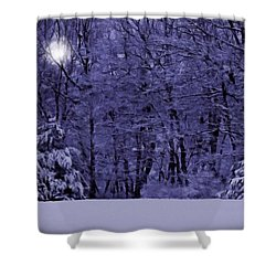 Shower Curtain featuring the photograph Blue Snow by David Dehner