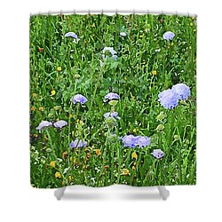 Blue Spring Flowers In Field Shower Curtain