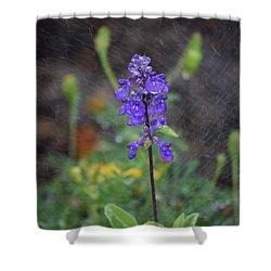 Blue Standing Shower Curtain