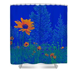 Blue Summer Shower Curtain by Janice Westerberg