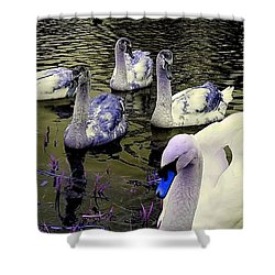 Blue Swan Shower Curtain