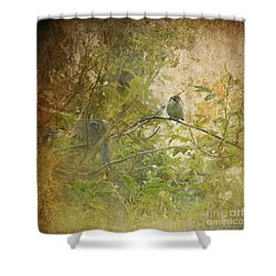 Blue Tit Youngsters Shower Curtain by Liz Alderdice