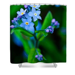 Blue Topper Shower Curtain