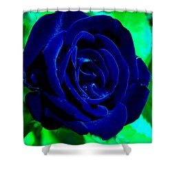 Blue Velvet Rose Shower Curtain