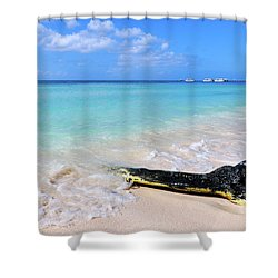 Blue Water And White Sand Shower Curtain