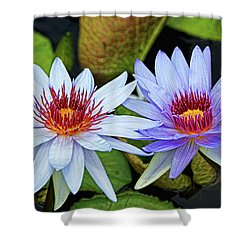 Shower Curtain featuring the photograph Blue Water Lilies by Judy Vincent